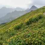 Šelma – Ultra chodnik vo vysokých tatrách