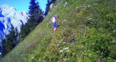 Heribert Zojer - Rakúska sekcia Alpenverein Obergailtal-Lesachtal prijala pozemky v Karnských Alpách